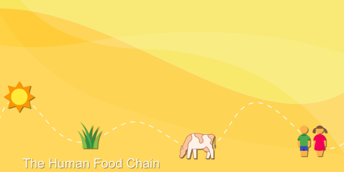 Securing the Human Food Chain
