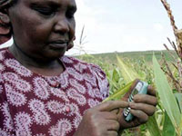 Role of ICT in Agriculture