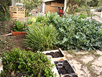 Permaculture: Getting the most out of your farm